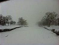2-16-15 SNOWSTORM.jpg B